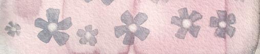 Flowers_Banner